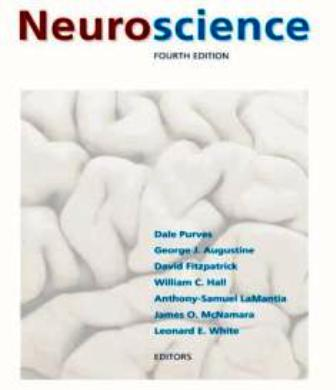 Book: Neuroscience, 4th Edition