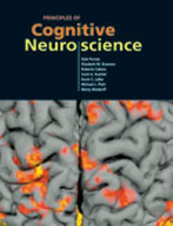 Book: Principles of Cognitive Neuroscience